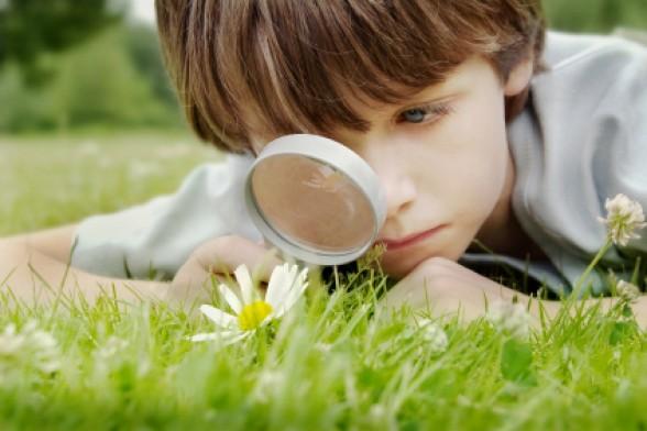 hãy để trẻ tự do quan sát mọi thứ xung quanh