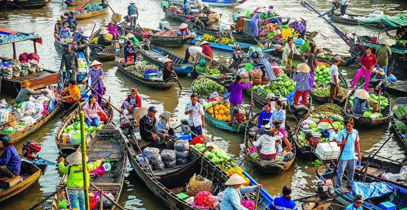 Mekong Delta 1
