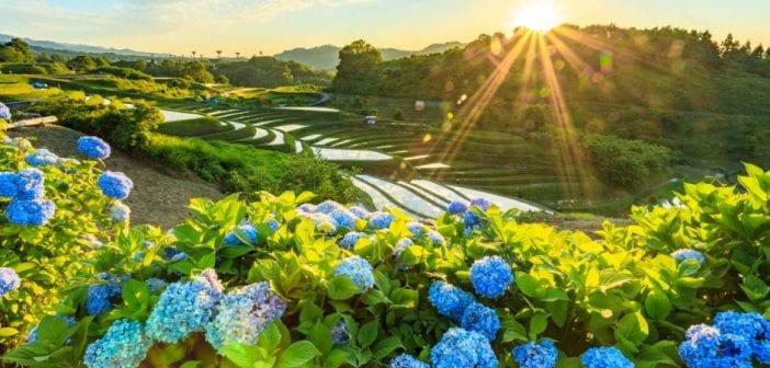 địa điểm vui chơi làng Chihaya Akasaka Osaka